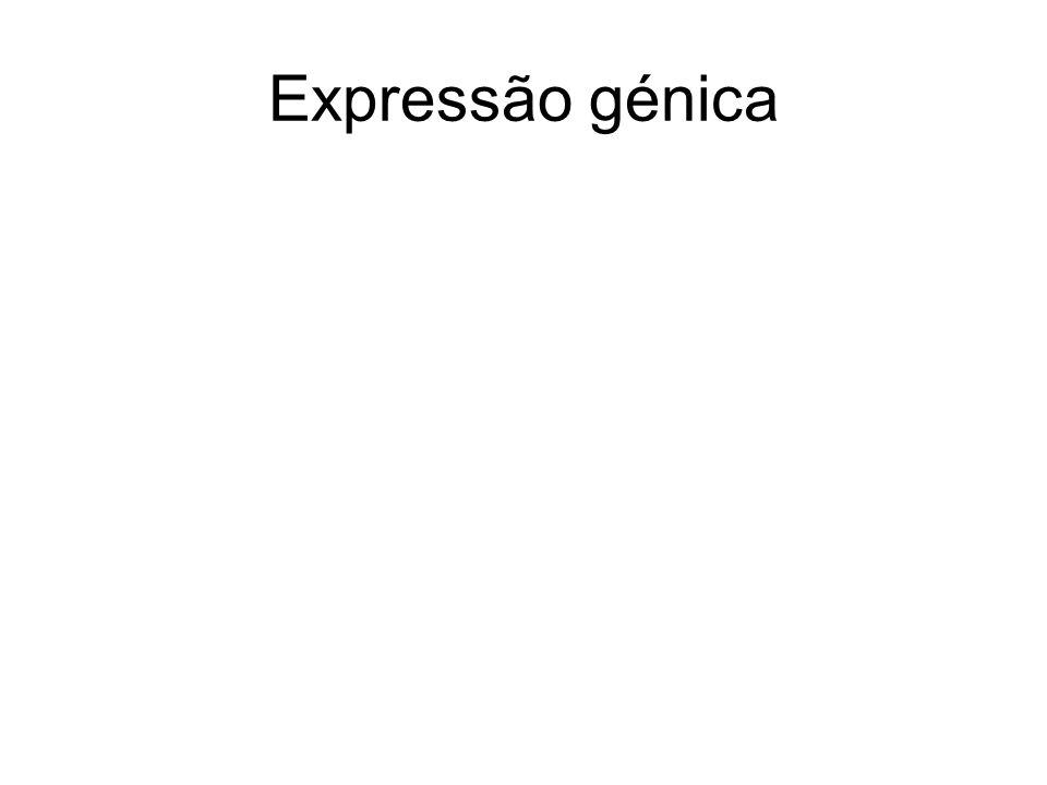 Expressão génica
