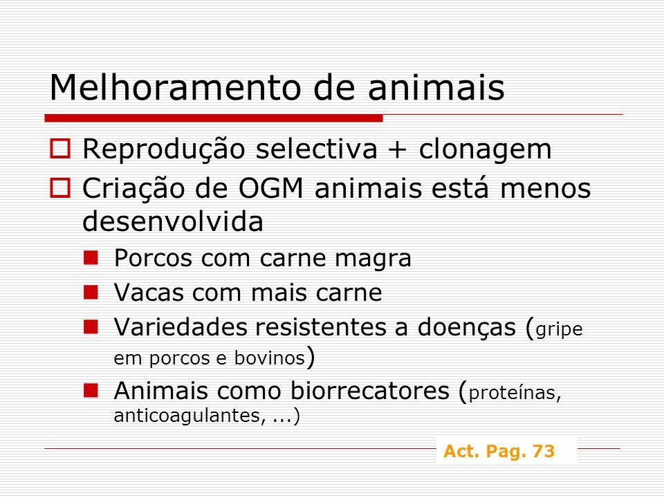 Melhoramento de animais