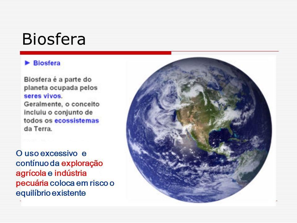Biosfera O uso excessivo e contínuo da exploração agrícola e indústria pecuária coloca em risco o equilíbrio existente.
