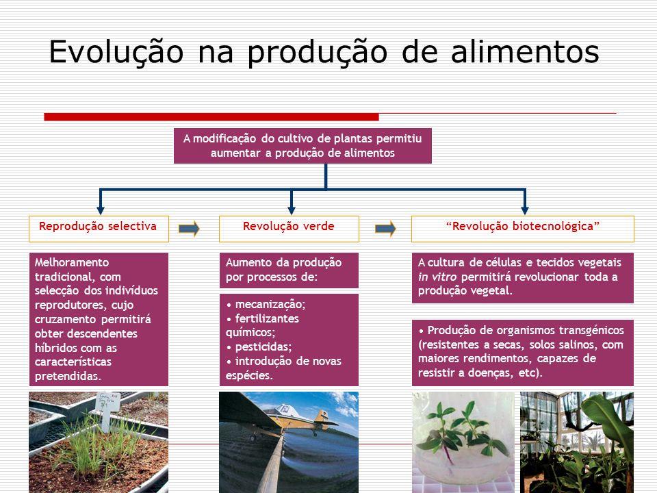Evolução na produção de alimentos