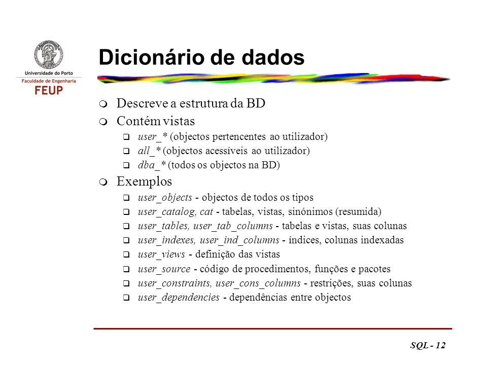 Dicionário de dados Descreve a estrutura da BD Contém vistas Exemplos