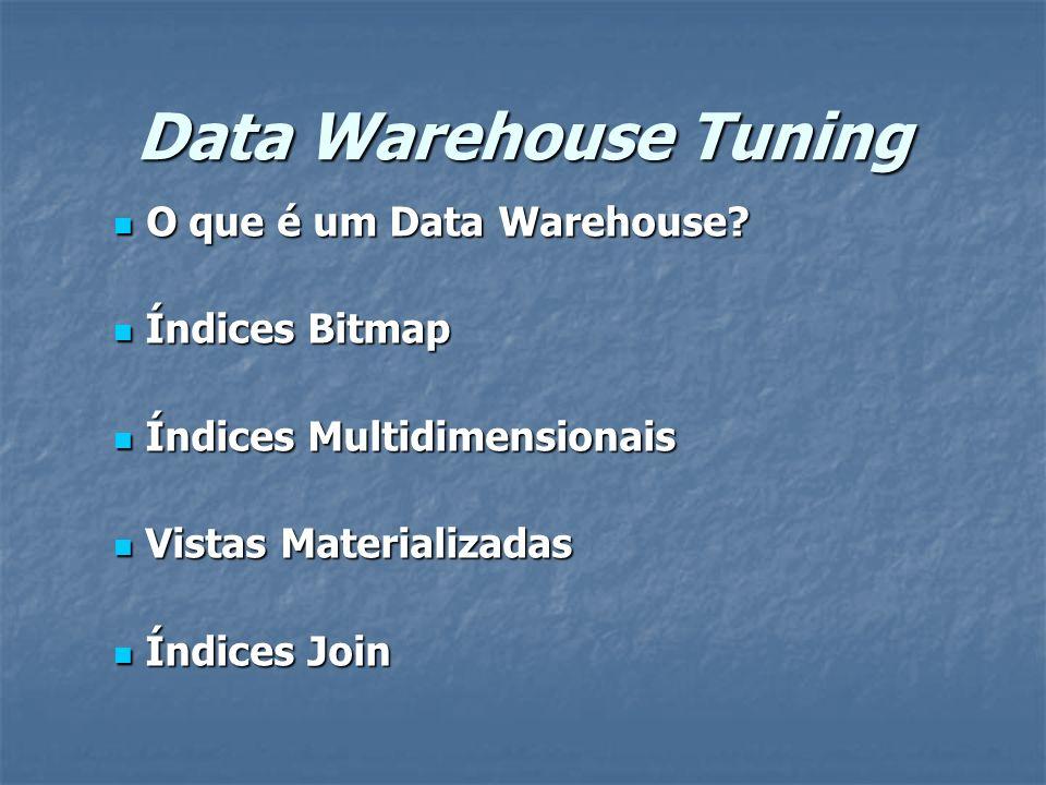 Data Warehouse Tuning O que é um Data Warehouse Índices Bitmap