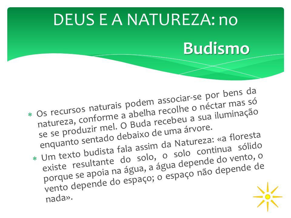 DEUS E A NATUREZA: no Budismo