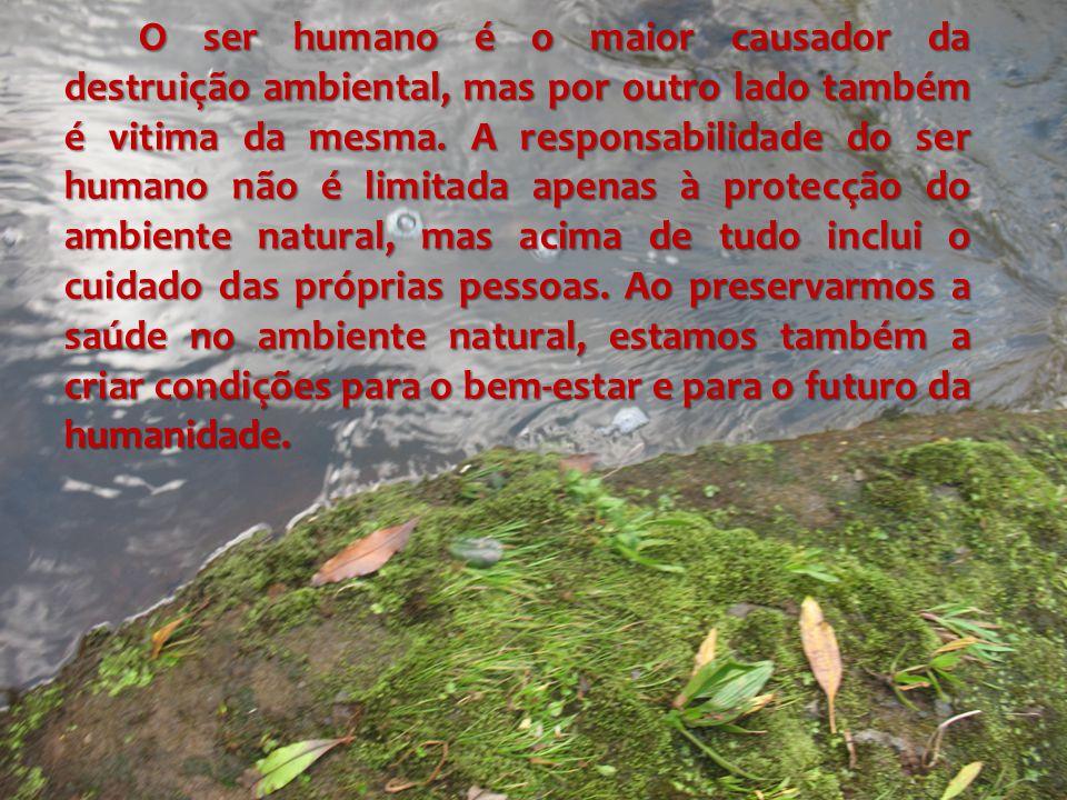 O ser humano é o maior causador da destruição ambiental, mas por outro lado também é vitima da mesma.