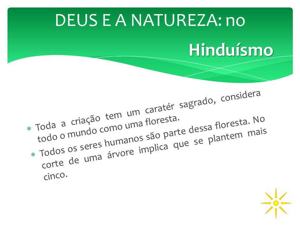 DEUS E A NATUREZA: no Hinduísmo