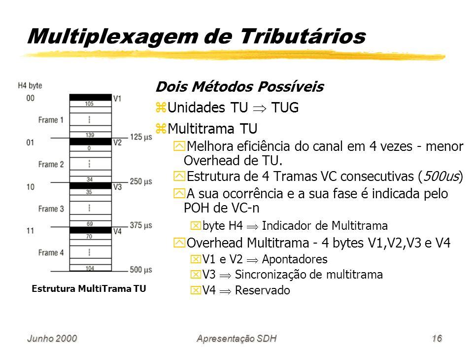 Multiplexagem de Tributários