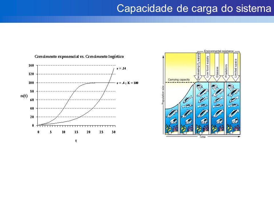 Capacidade de carga do sistema