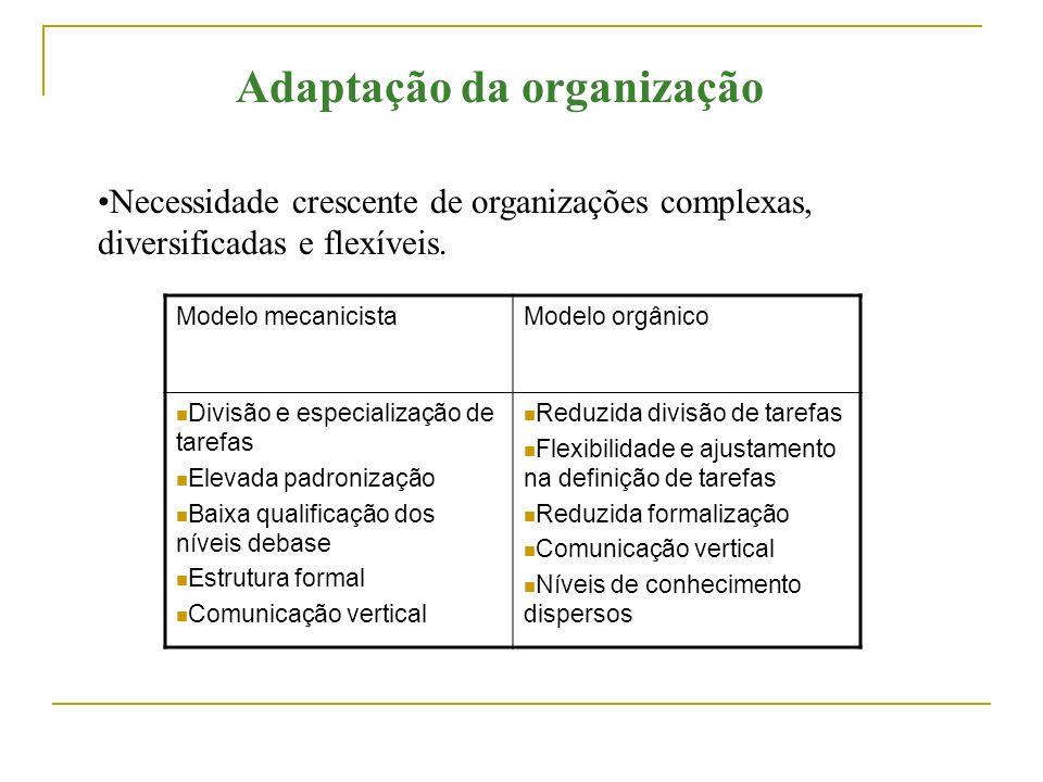 Adaptação da organização