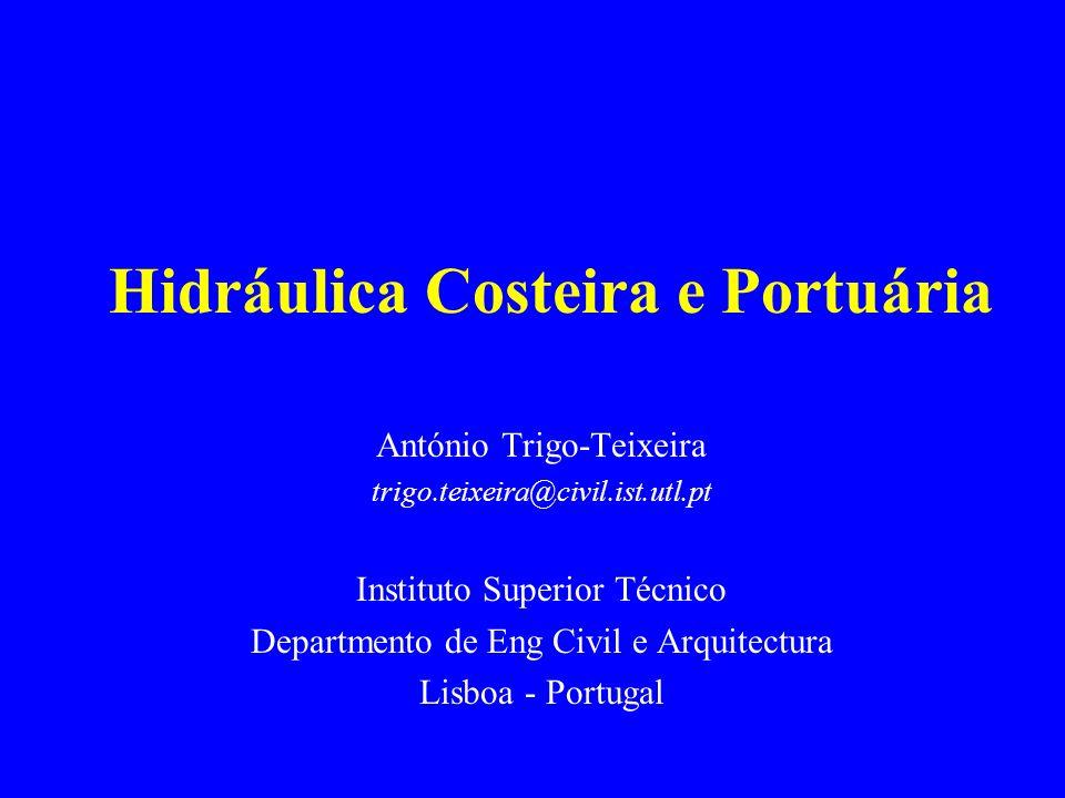 Hidráulica Costeira e Portuária