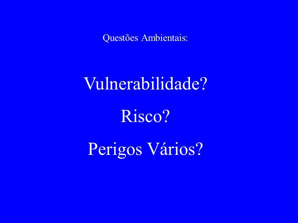 Questões Ambientais: Vulnerabilidade Risco Perigos Vários