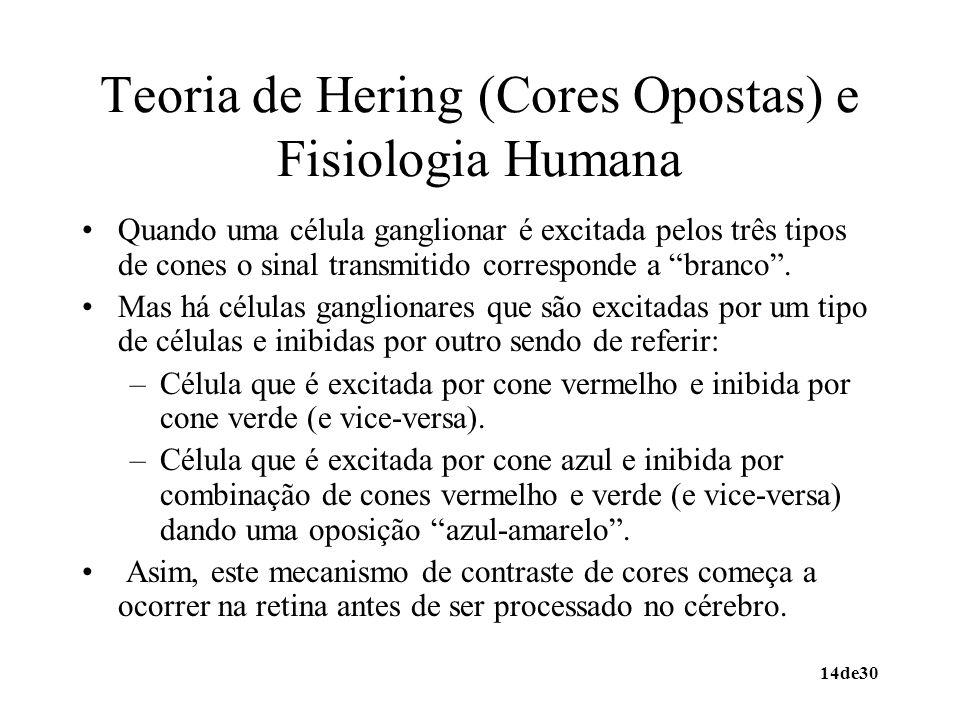 Teoria de Hering (Cores Opostas) e Fisiologia Humana