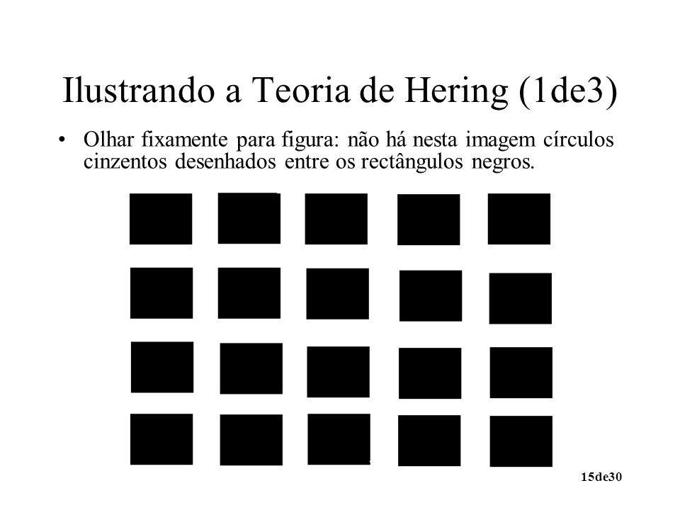 Ilustrando a Teoria de Hering (1de3)
