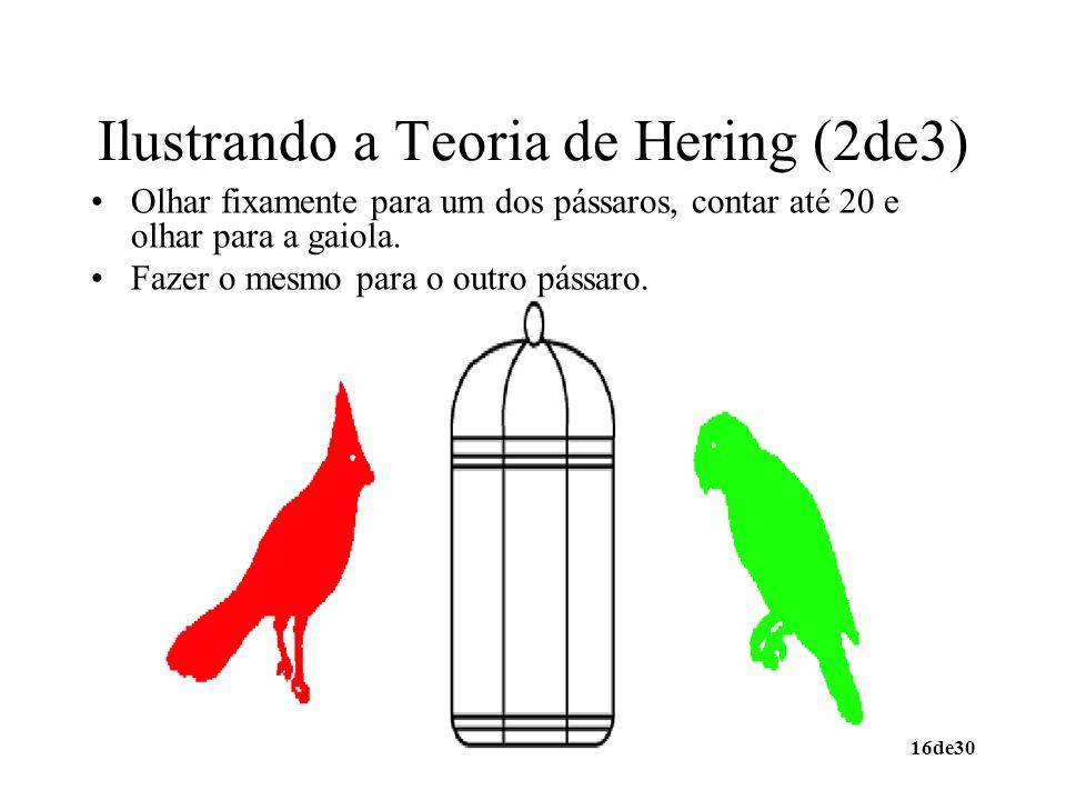 Ilustrando a Teoria de Hering (2de3)