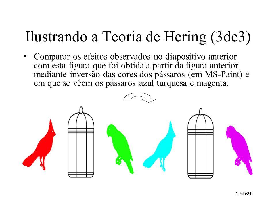 Ilustrando a Teoria de Hering (3de3)