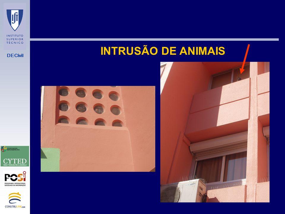 INTRUSÃO DE ANIMAIS