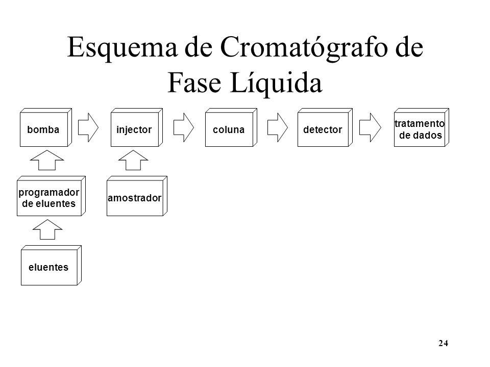 Esquema de Cromatógrafo de Fase Líquida