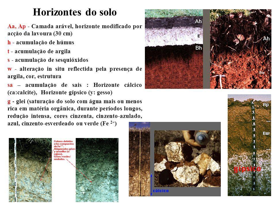 Horizontes do solo Aa, Ap - Camada arável, horizonte modificado por acção da lavoura (30 cm) h - acumulação de húmus.