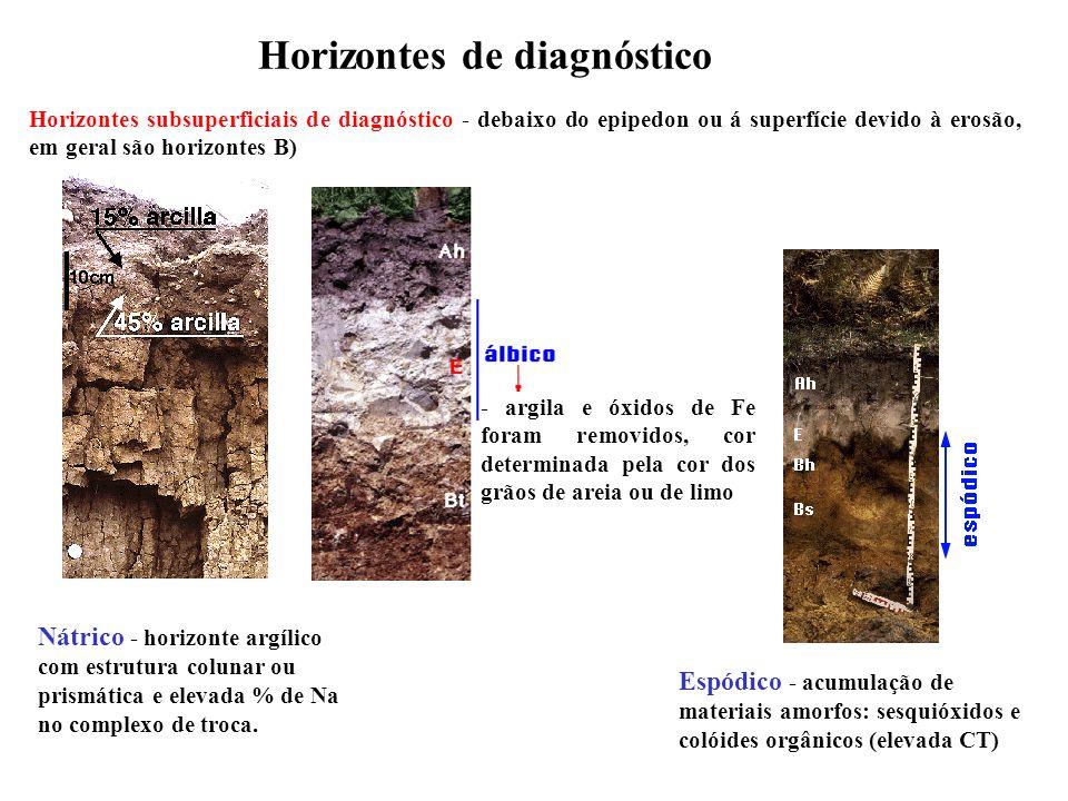 Horizontes de diagnóstico
