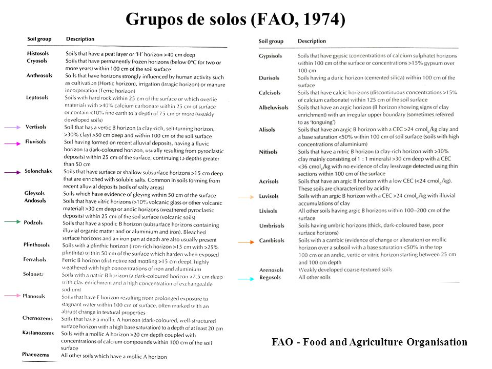 Grupos de solos (FAO, 1974) FAO - Food and Agriculture Organisation