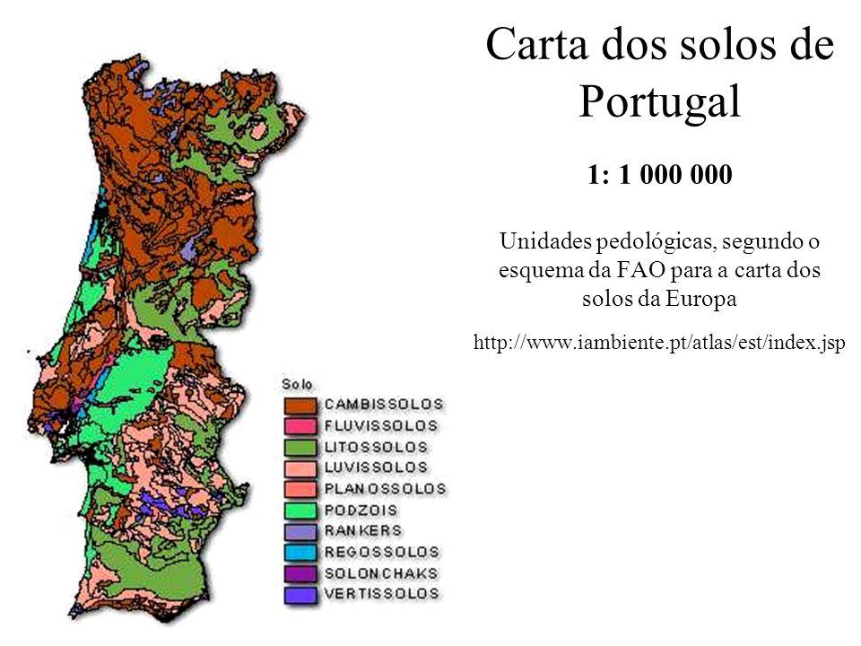 Carta dos solos de Portugal 1: 1 000 000 Unidades pedológicas, segundo o esquema da FAO para a carta dos solos da Europa http://www.iambiente.pt/atlas/est/index.jsp