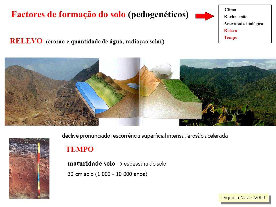 Factores de formação do solo (pedogenéticos)