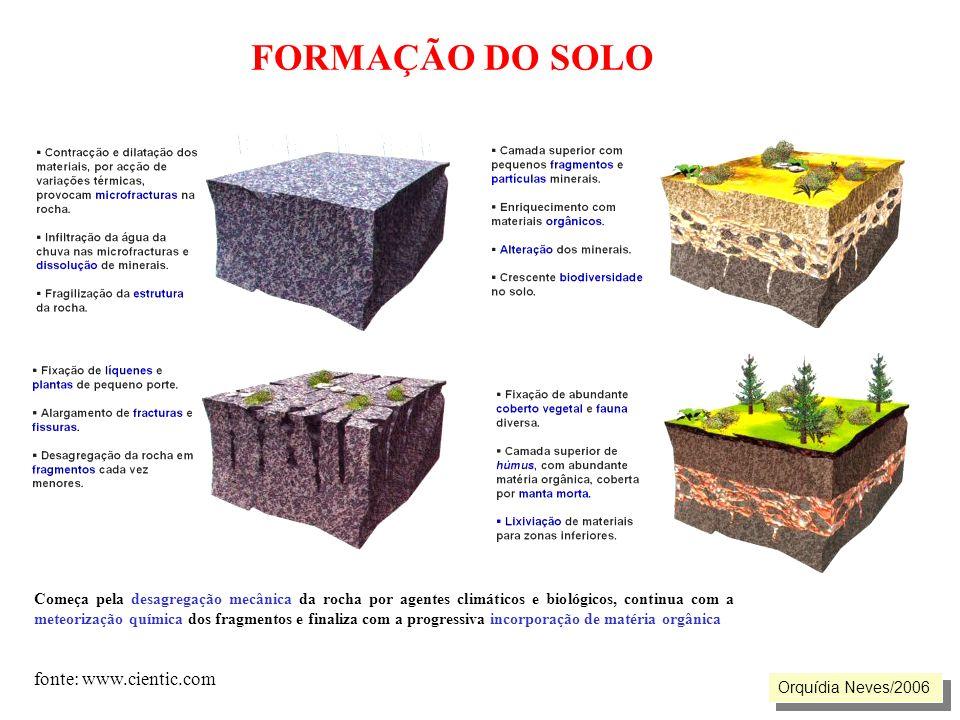 FORMAÇÃO DO SOLO fonte: www.cientic.com