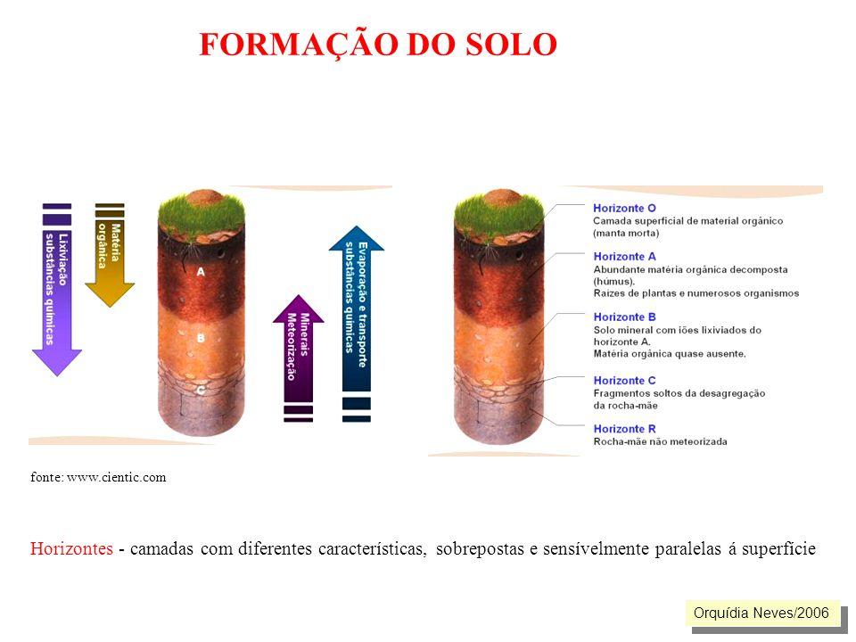FORMAÇÃO DO SOLO fonte: www.cientic.com. Horizontes - camadas com diferentes características, sobrepostas e sensívelmente paralelas á superfície.