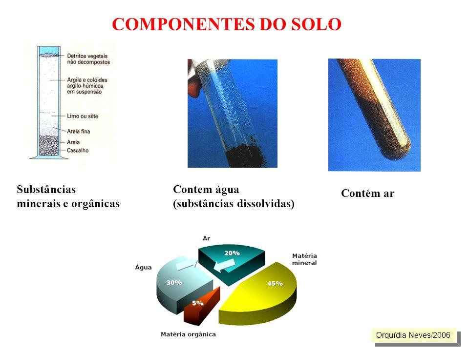 COMPONENTES DO SOLO Substâncias minerais e orgânicas