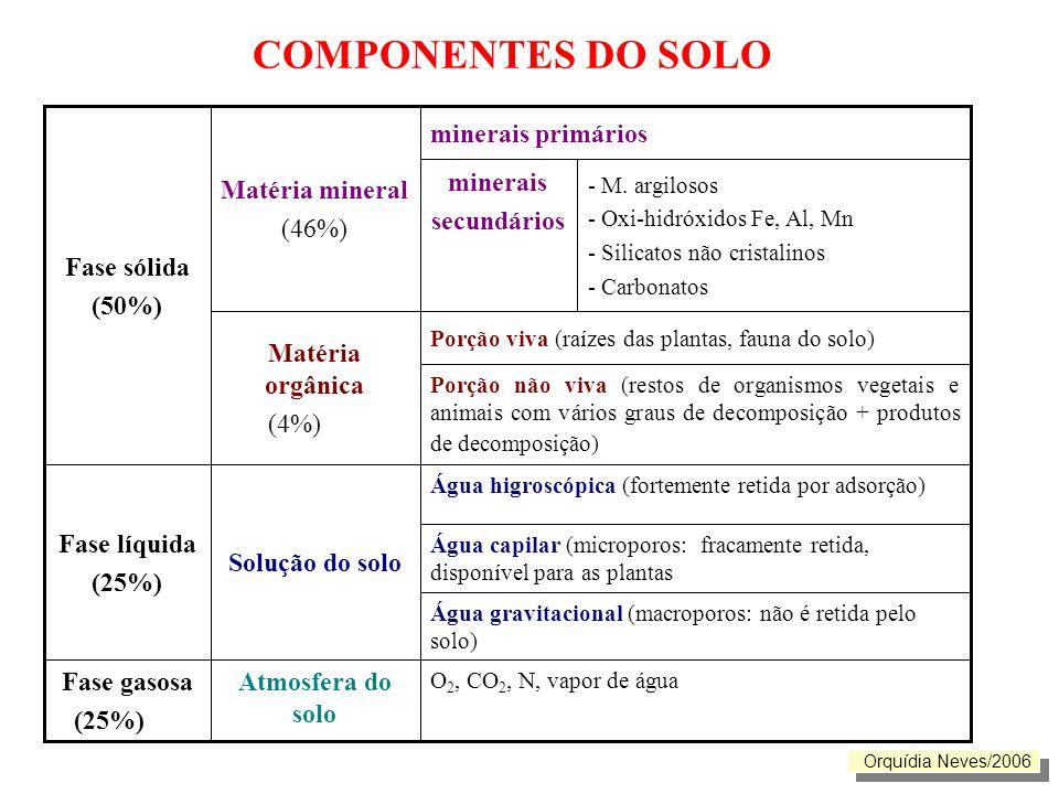 COMPONENTES DO SOLO Atmosfera do solo Fase gasosa (25%)