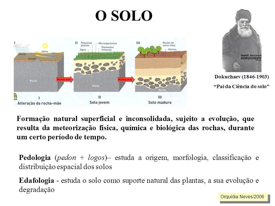 Pai da Ciência do solo