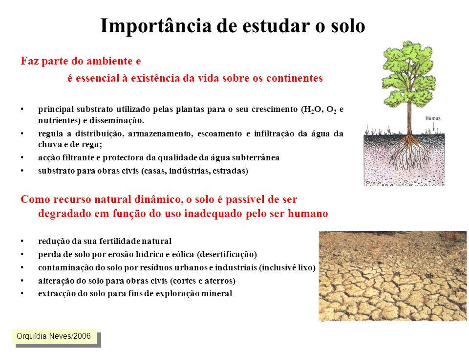 Importância de estudar o solo