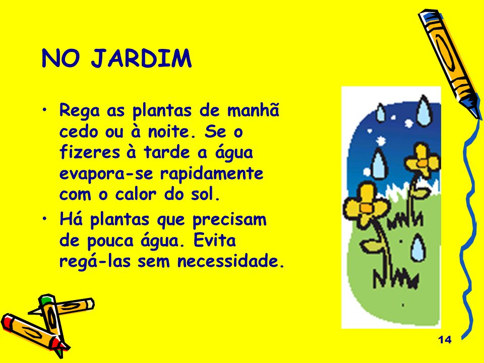 NO JARDIM Rega as plantas de manhã cedo ou à noite. Se o fizeres à tarde a água evapora-se rapidamente com o calor do sol.