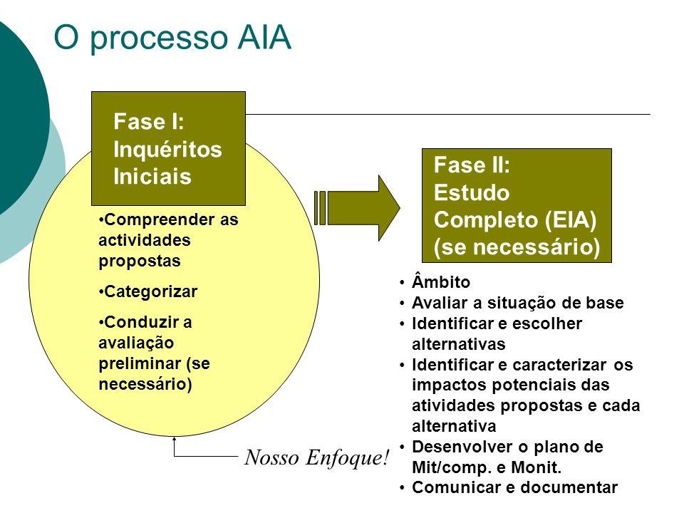 O processo AIA Fase I: Inquéritos Iniciais