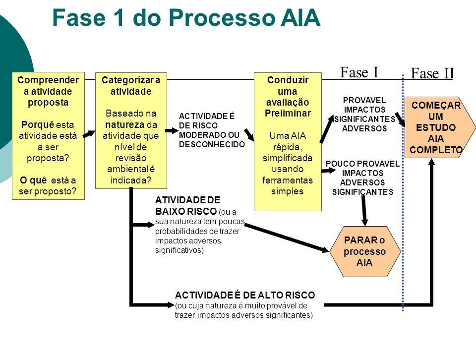 Fase 1 do Processo AIA Fase I Fase II Compreender a atividade proposta