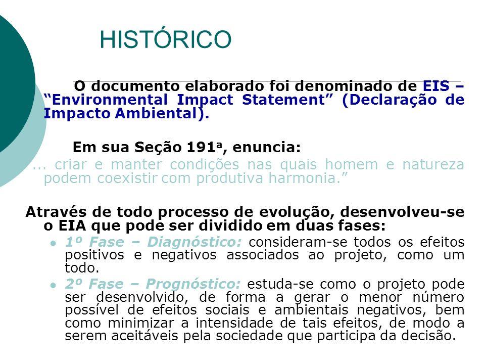 HISTÓRICO O documento elaborado foi denominado de EIS – Environmental Impact Statement (Declaração de Impacto Ambiental).
