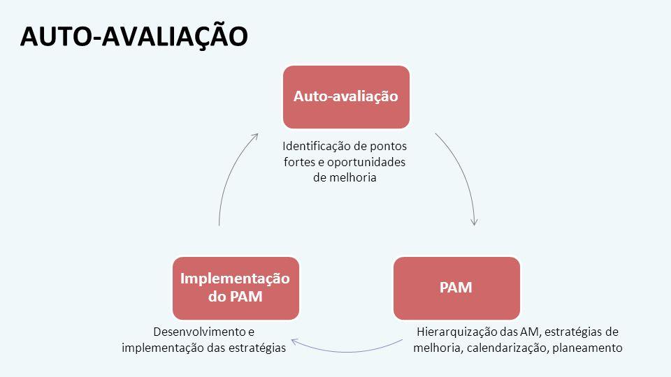 AUTO-AVALIAÇÃO Auto-avaliação Implementação do PAM PAM