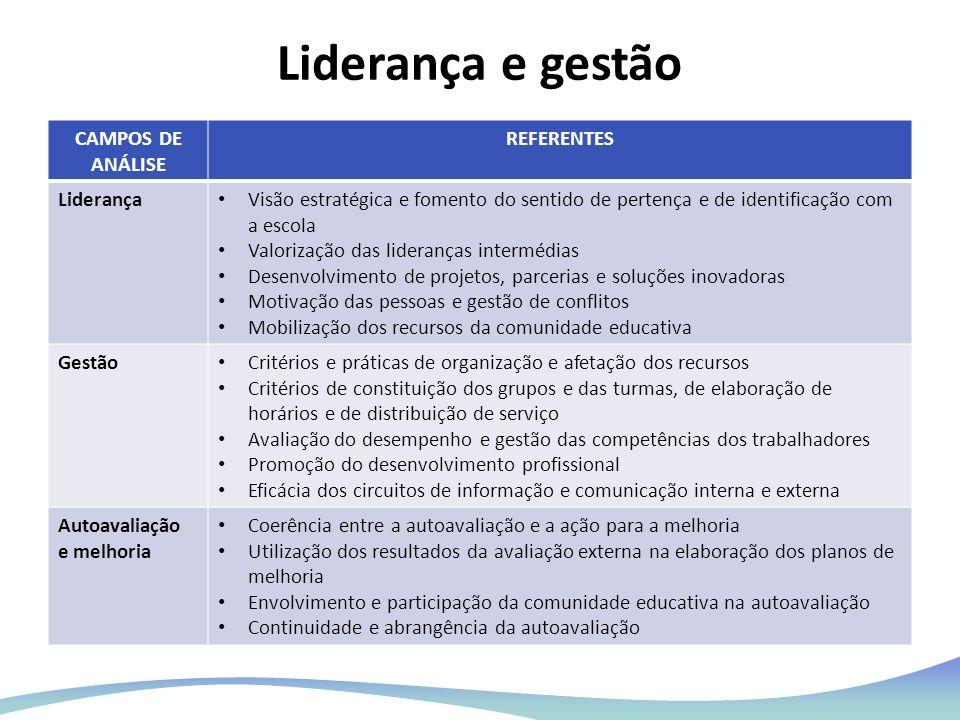 Liderança e gestão CAMPOS DE ANÁLISE REFERENTES Liderança