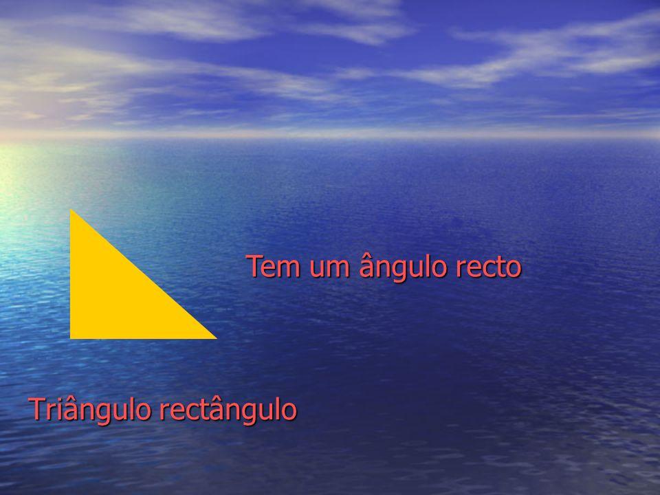 Tem um ângulo recto Triângulo rectângulo