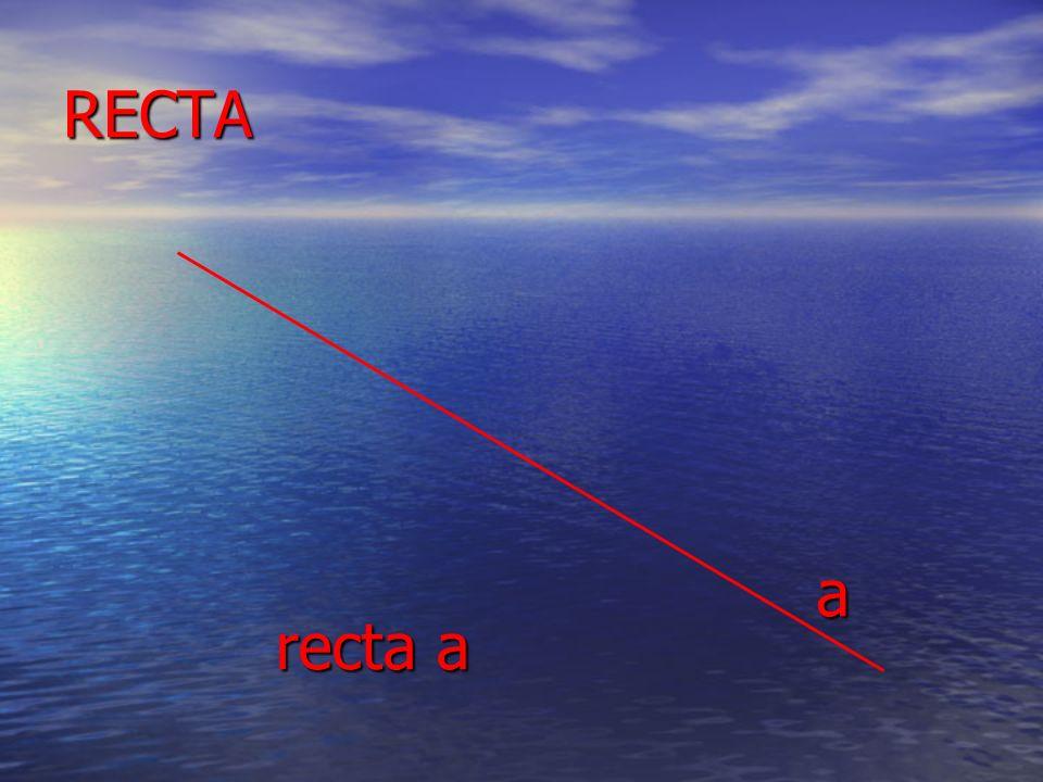 RECTA a recta a
