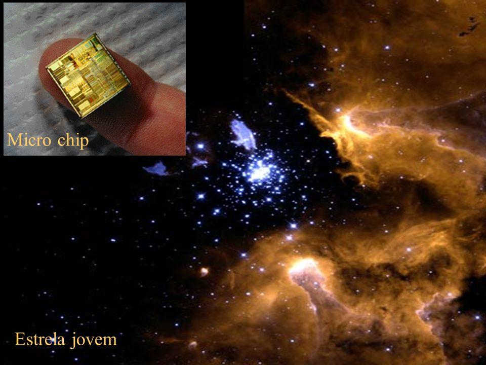 Micro chip Estrela jovem