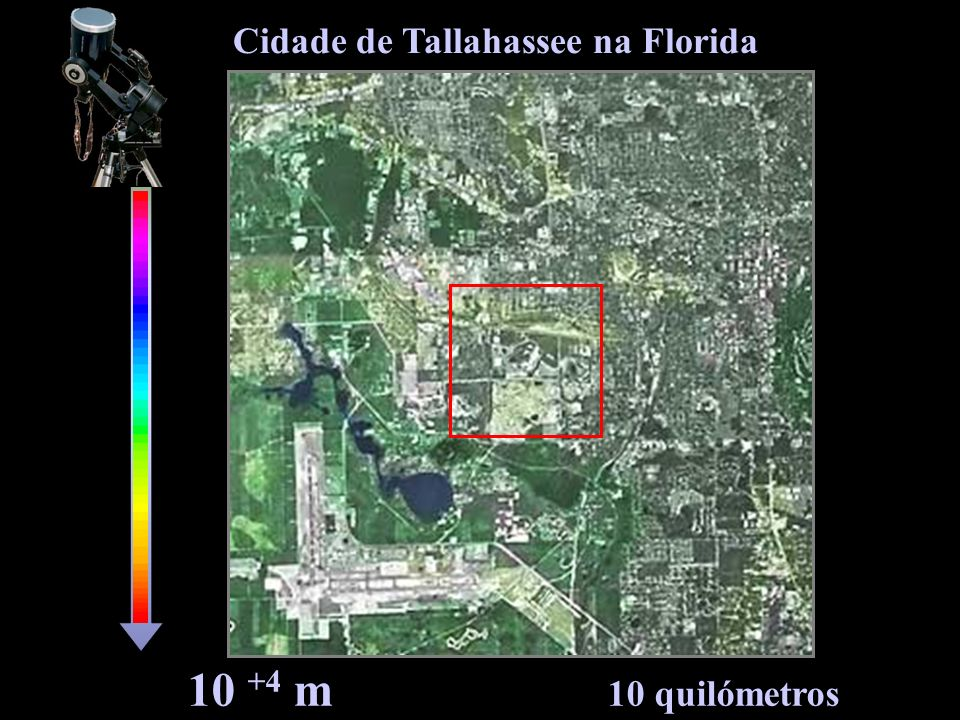 Cidade de Tallahassee na Florida