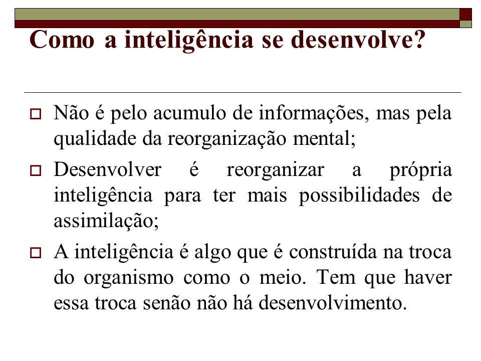 Como a inteligência se desenvolve