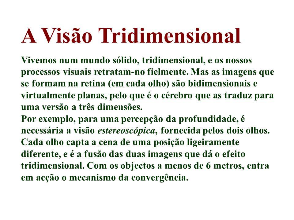 A Visão Tridimensional