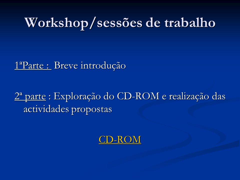 Workshop/sessões de trabalho