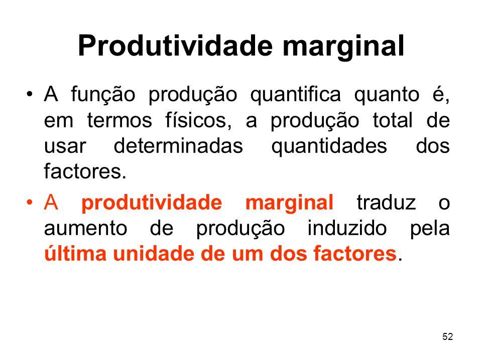 Produtividade marginal