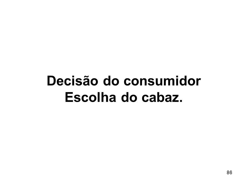 Decisão do consumidor Escolha do cabaz.