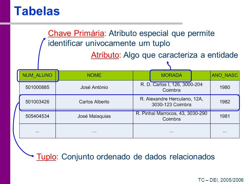 TabelasChave Primária: Atributo especial que permite identificar univocamente um tuplo. Atributo: Algo que caracteriza a entidade.