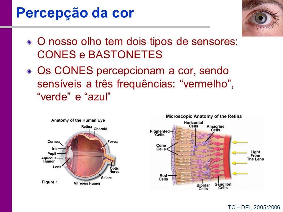 Percepção da cor O nosso olho tem dois tipos de sensores: CONES e BASTONETES.