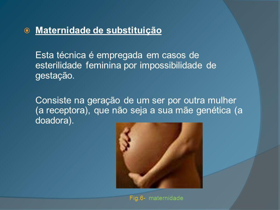 Maternidade de substituição