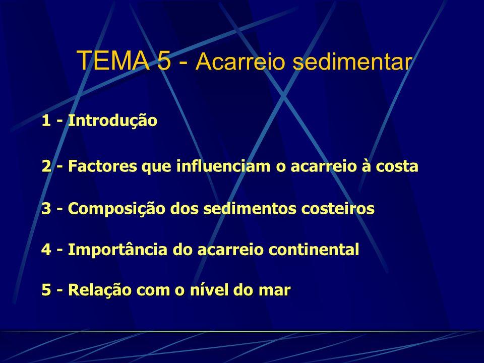 TEMA 5 - Acarreio sedimentar